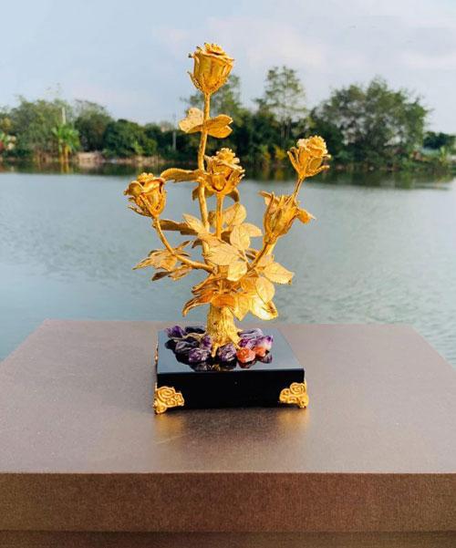 Cây hoa hồng mạ vàng