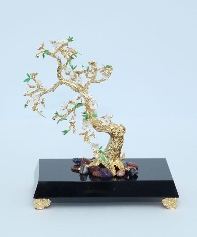 Cây hoa mai mạ vàng