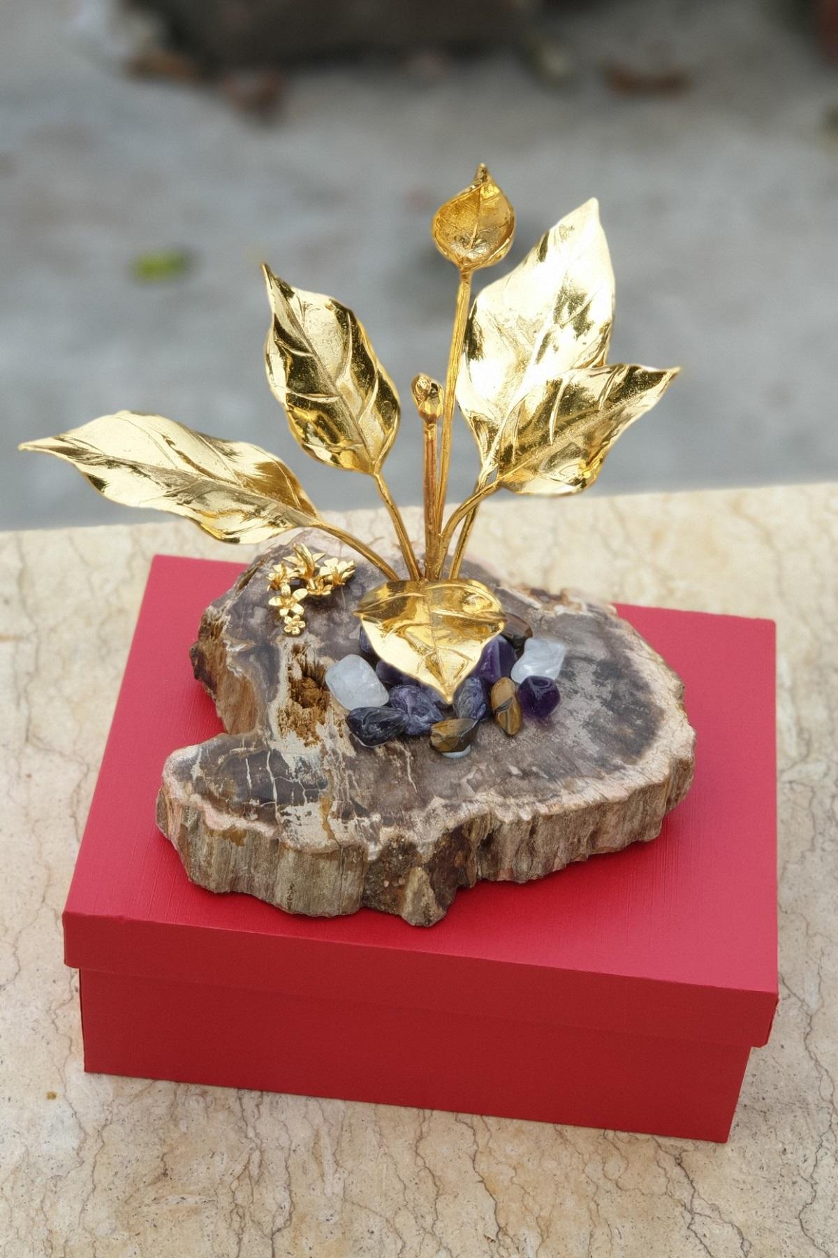 Cây phú quý mạ vàng