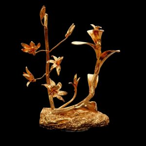 Cây lan đột biến mạ vàng
